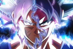 Goku Ultra Instinct Transformation