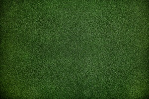 Grass Background Wallpaper