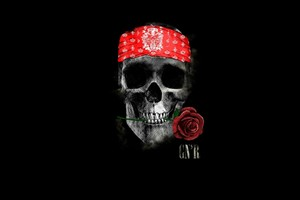 Gun N Roses Wallpaper