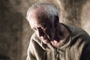 High Sparrow Wallpaper