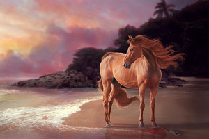 Horse On Beach Artwork