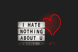I Hate Nothing About You