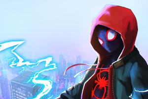 Into The Spider Verse Wallpaper