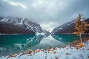 Lake Louise Canada 8k Wallpaper
