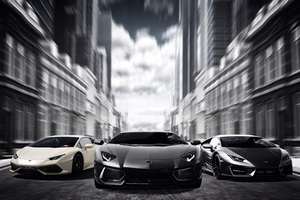 Lamborghinis Black And White 4k