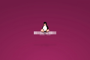 Linux Penguin Wallpaper