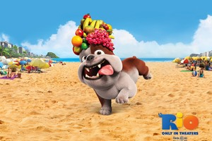 Luiz Bulldog In Rio Movie