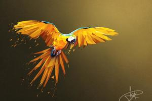 Macaw Low Poly Digital Art 4k