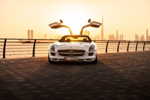 Mercedes Benz SLS AMG Sports Car