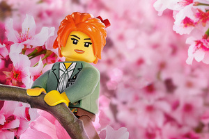 MISAKO The LEGO Ninjago Movie
