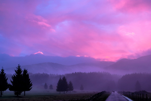 Misty Pink Sunset Wallpaper