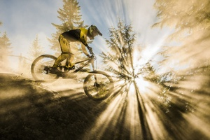 Mountain Bike Sunbeam Wallpaper