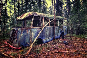 Old Vintage Bus In Forest