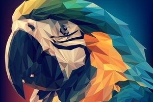 Parrot Low Poly Wallpaper