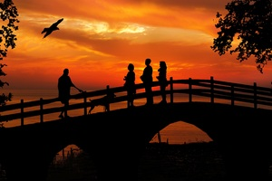 People Standing On Bridge Dog Bird Silhouette