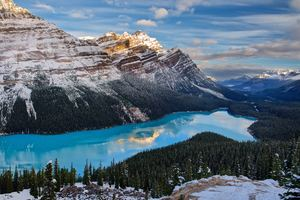 Peyto Lake Canada 5k Wallpaper