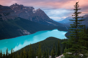 Peyto Lake Canada Mountains 4k Wallpaper
