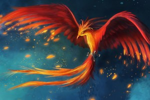Phoenix Art Wallpaper