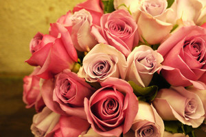 Pink Roses Bouquet Wallpaper