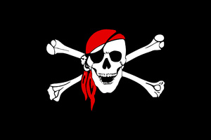 Pirate Flag Skull