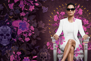 Queen Of The South Tv Show