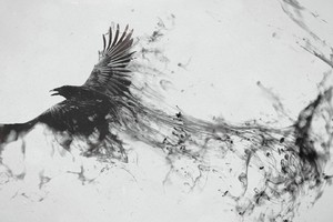 Raven Bird Art Wallpaper
