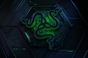 Razer 4k Logo Wallpaper