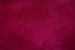 Red Smooth Fur Texture Abstract 4k Wallpaper