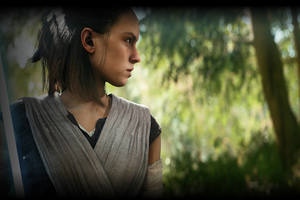 Rey In Star Wars Battlefront 2 4k 5k