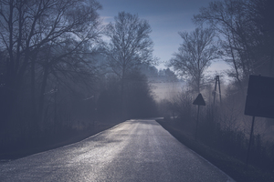 Road Tree Mist 5k Wallpaper