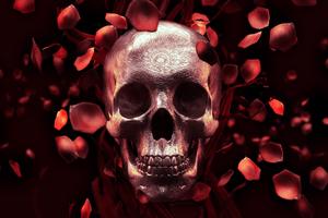 Rose Petal Skull Wallpaper