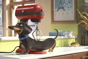 Secrete Life of Pets Movie