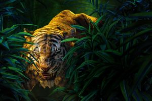 Shere Khan The Jungle Book Movie