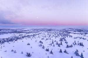 Snow Covered Field 4k Wallpaper