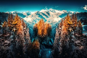 Snow Landscape Mountains Trees Forest 5k Wallpaper