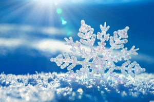 Snowflakes Background Wallpaper