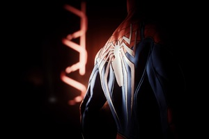 Spiderman Back Spider Logo 4k Wallpaper