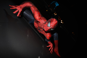 Spiderman Crawling On The Wall Wallpaper