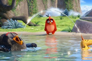 The Angry Birds Movie Latest