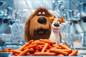 The Secrete Life of Pets Animated Movie
