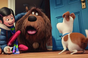 The Secrete Life of Pets Movie Original
