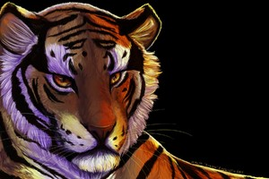 Tiger Art Wallpaper