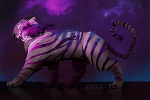 Tiger Art By Alex Braun