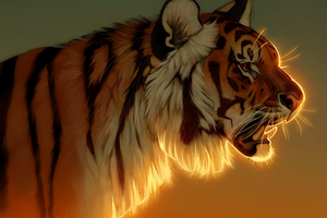 Tiger Evening Glow 5k Wallpaper