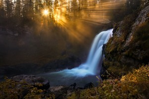 Waterfall In Forest Sunbeam Trees