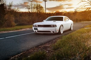 White Muscle Car