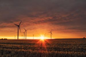 Wind Turbines Sunrise 5k Wallpaper