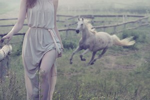 Women Outdoor With White Horse