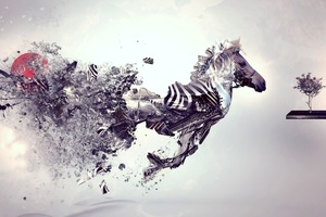 Zebra Abstract Art