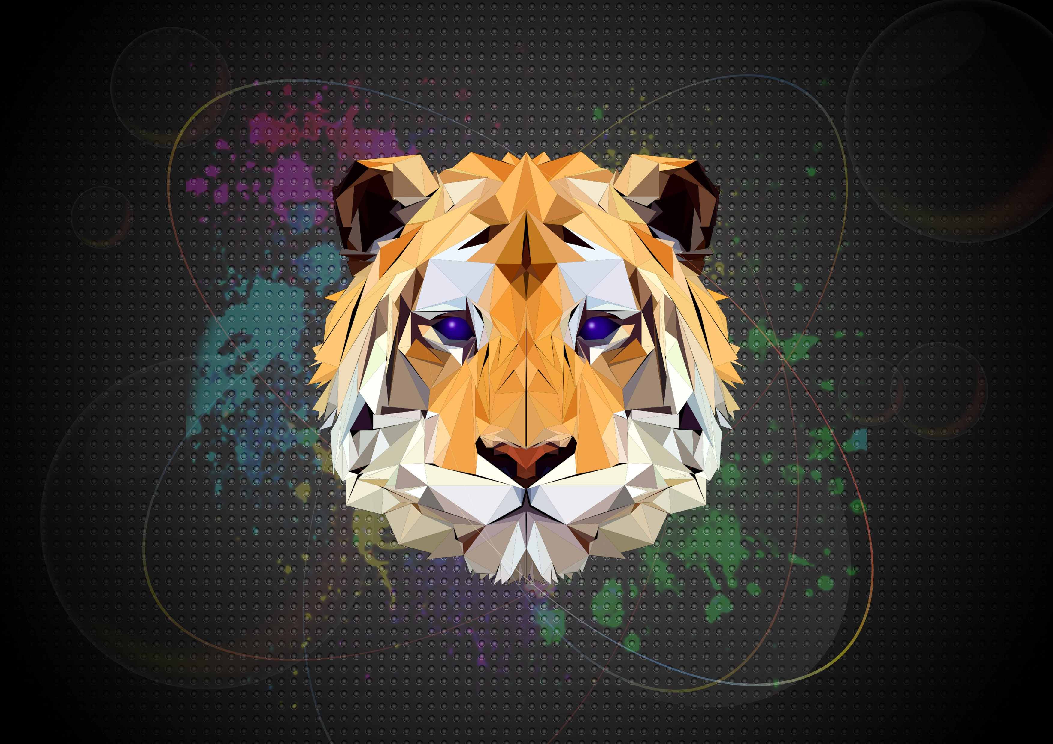Tiger Facets HD Artist 4k Wallpapers Images Backgrounds Photos